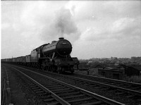 61875 1954 Moat Hills near Doncaster-ROneg-024