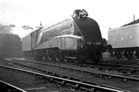4489 1930s Kings Cross Top Shed