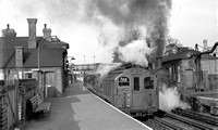 67213 1950s Epping