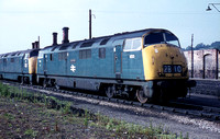 833 1971-06-05 Exeter