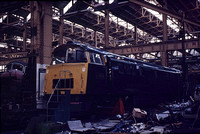 D1000 1967-03-12 Swindon Works