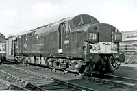 Class 37 English Electric Type 3