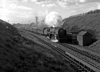 700xx 1960s Christleton water troughs, just south of Chester shed-ROneg-JCs-357